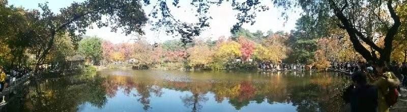 世谱检测勇攀登,天平山顶枫叶红